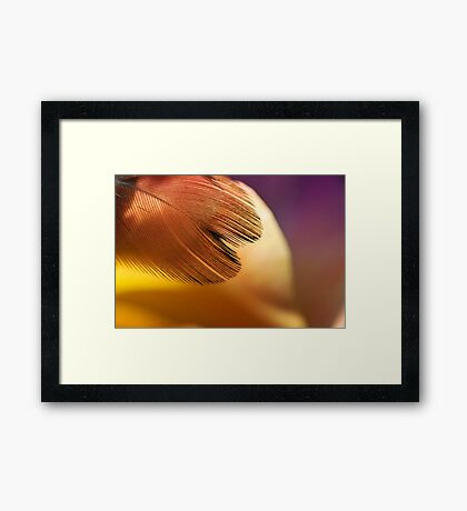 Sunset Thighs Framed Print