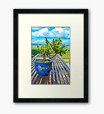 BONSAI.. Framed Print