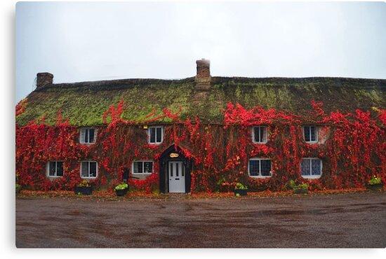 Red Farmhouse. Devon, UK by lynn carter