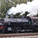 Strasburg train by Penny Fawver