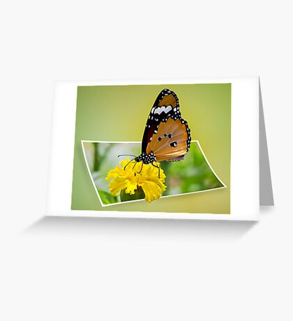 Jump into the Photo Greeting Card