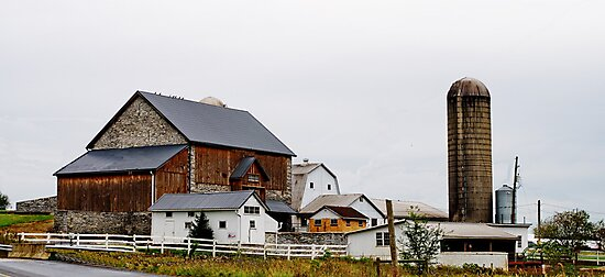 Barns by Penny Fawver
