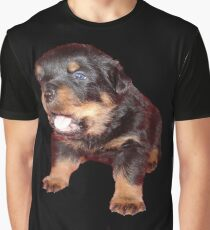 Rottweiler Puppy Isolated On Black Graphic T-Shirt