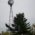 wind mill by Penny Rinker