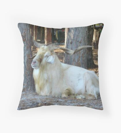 INDEED IT IS GOOD TO BE KING Throw Pillow
