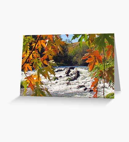 Autumn ~ Mother Nature at Her Finest  Greeting Card