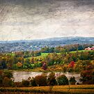 The Rolling Hill of Wayne County Pennsylvania by Debra Fedchin