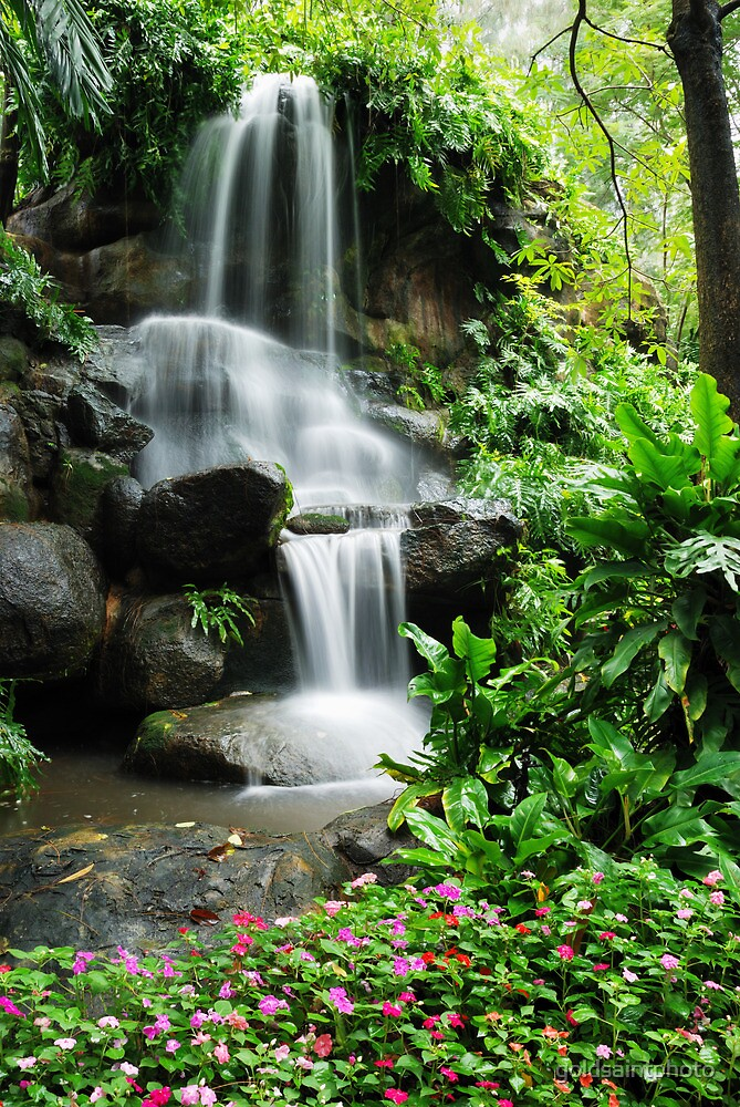 Waterfall And The Beautiful Flowers In Garden By Goldsaintphoto