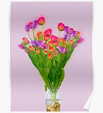 Tulips in a transparent glass vase Poster