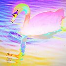 Bright pink left facing swan by ♥⊱ B. Randi Bailey