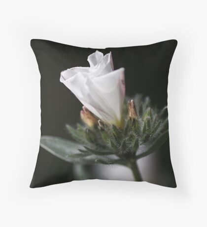 The Morning Glory Throw Pillow