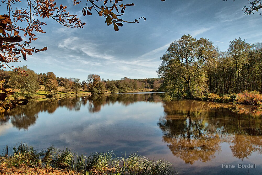 Reflections on the lake. by Irene  Burdell