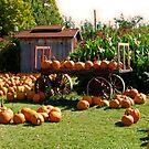 It's Pumpkin Time by VJSheldon