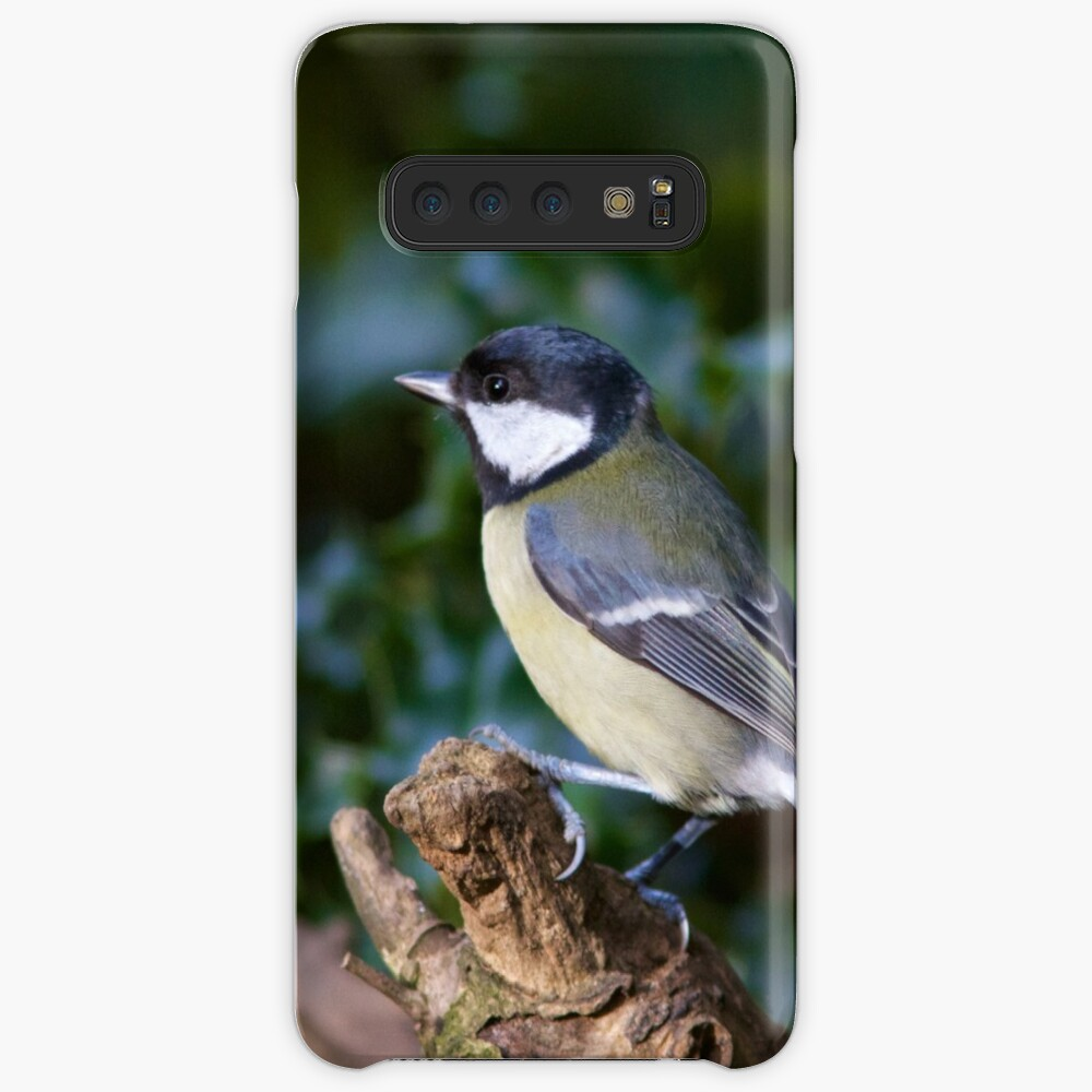 A Great Tit (Parus Major) Perched in Woodland Case & Skin for Samsung Galaxy