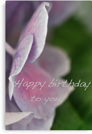 Hydrangea for your birthday by Heather Thorsen