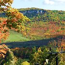 Fall view from the ski lift by Heather Crough