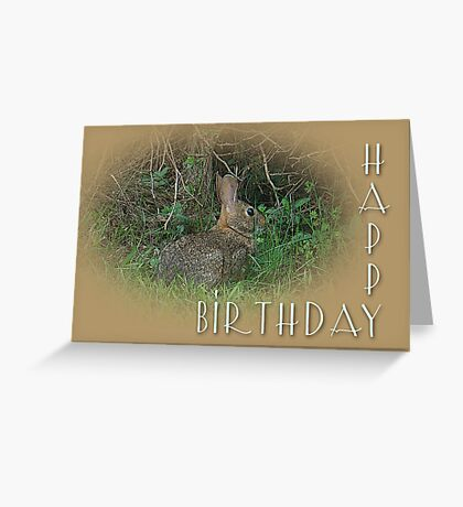Happy Birthday Greetings - Cottontail Rabbit Greeting Card