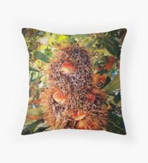 iPhoneography: Old Man Banksia Throw Pillow