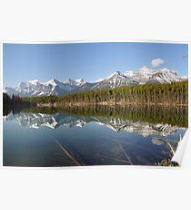 Lake Herbert Poster