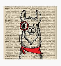 Llama with Monocle Photographic Print