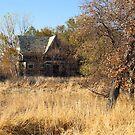 Nature Takes Back Her Land by Scott Hendricks