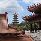 Nan Tien Temple  by Lunaria