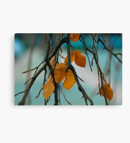 Autumn Love Canvas Print