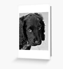 Do you still love me? Greeting Card