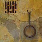 Wall - Siena, Tuscany, Italy by newbeltane