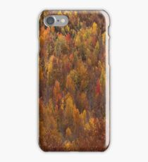 Autumn Palette iPhone Case/Skin