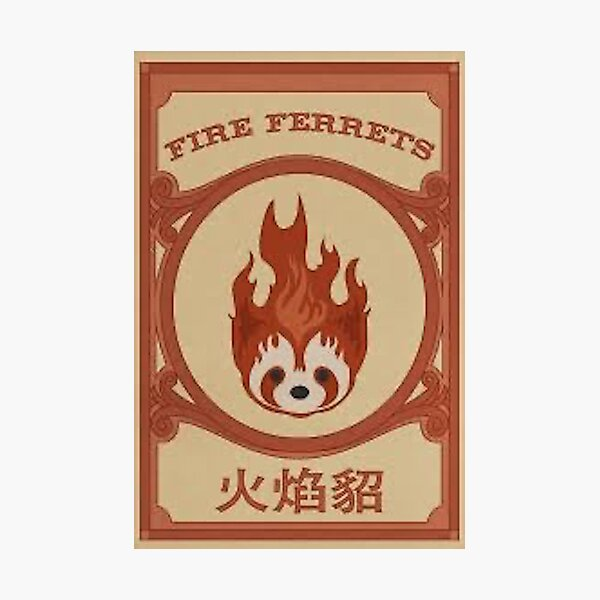 Go Fire Ferrets! Photographic Print