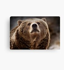 Eyeing Me Up Canvas Print