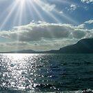 Luz y sombra en el lago..... by cieloverde