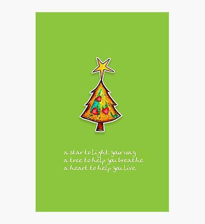 Christmas Card - Wild Lime Wish Tree Photographic Print