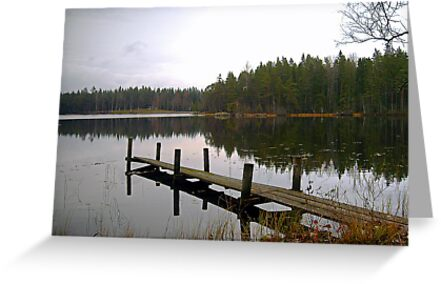 late autumn lake by globeboater