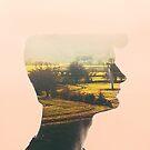 A Window by Olivia McNeilis