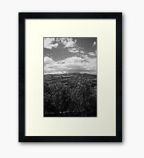 South American Flower Farms 10 Framed Print