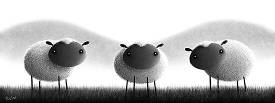 Sheep by TimD