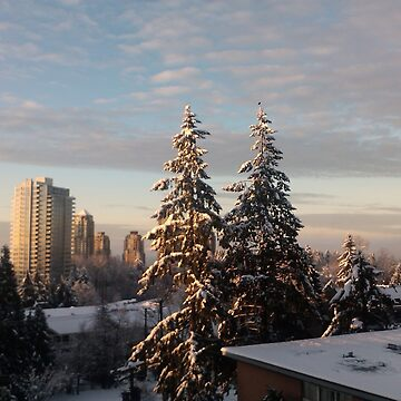 Sun on Snowy City Trees by darkesknight