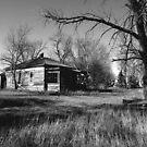 Alone on the Prairie by Scott Hendricks