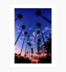 Lámina artística California Sunset