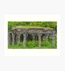 Abandoned Mandapam - Gingee Fort Art Print