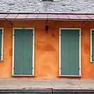 New Orleans Windows and Doors II by Igor Shrayer
