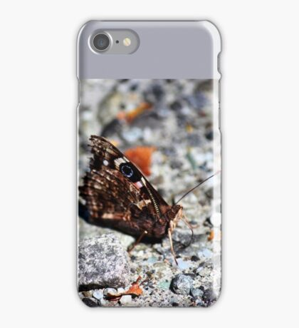 NZ Spotted Butterfly iPhone Case/Skin