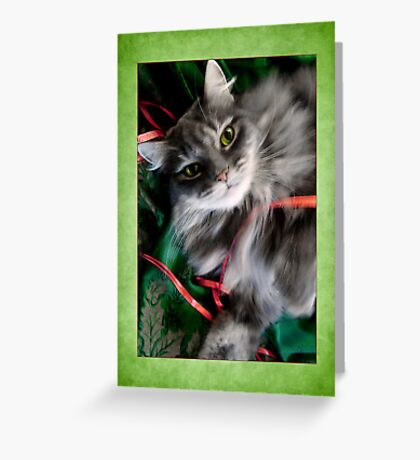 Sweet Pea Kitty Cat Christmas Card   Greeting Card