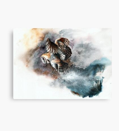Snow Patrol Canvas Print