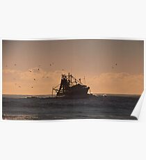 Trawler with birds and dolphins Poster