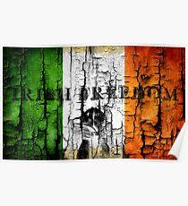 irish freedom Poster