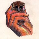 Mouse Lemur by kjen20