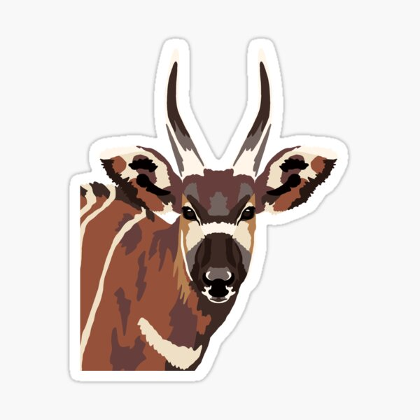 Bongo Portrait  Sticker